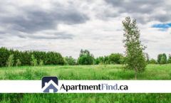 4042 Navan Road (Ontario) - Farmland For Rent