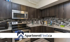 119 Daly Avenue (Sandy Hill) - 1525$