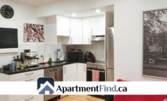 2744 Rue du Centre #5 (Montréal/ Pointe Saint Charles) - 1195$